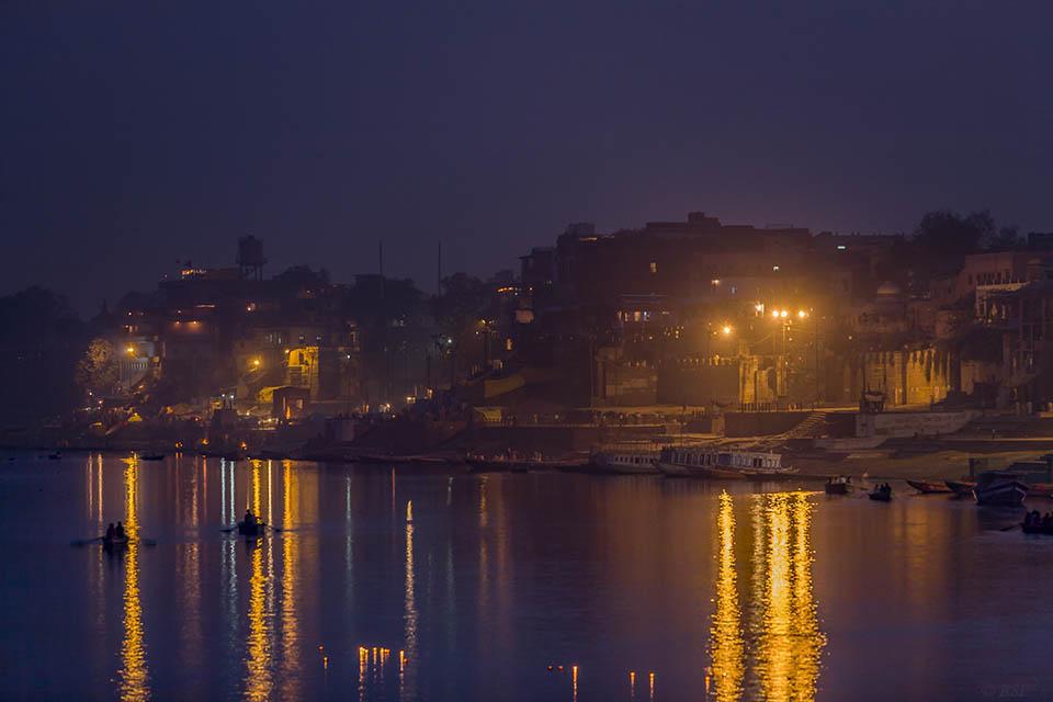 Striped Ganga