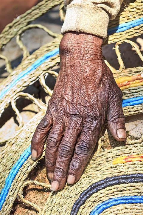 Gogo's Hand